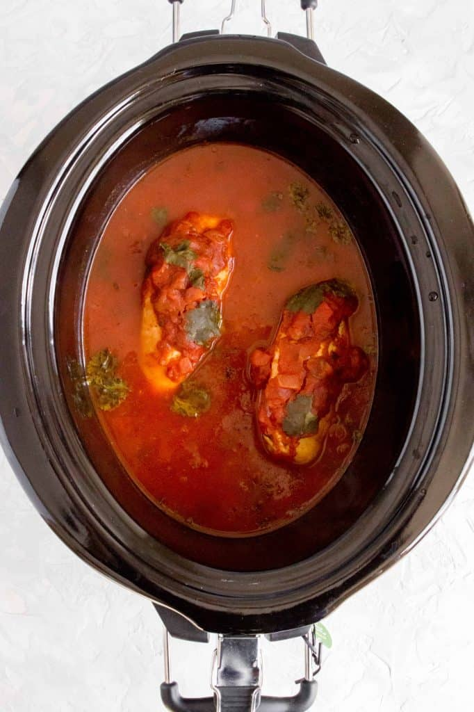 cooked lime cilantro chicken beasts in salsa sauce in a slow cooker